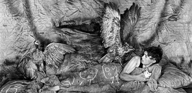 Roger Ballen, 'Threat' (detail) 2010. Image Courtesy of the artist and MONA Museum of Old and New Art, Hobart, Tasmania, Australia
