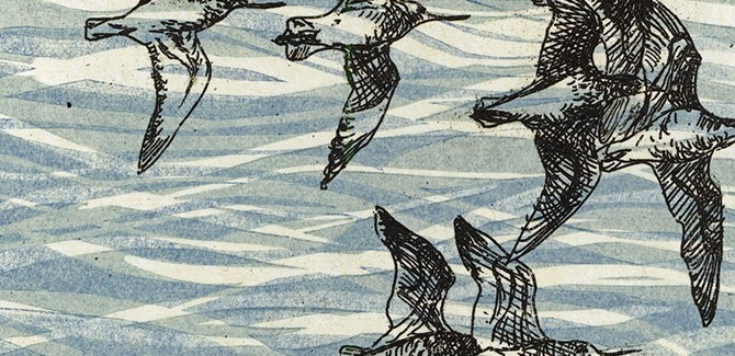 Kate Gorringe-Smith, Wings over water. The Flyway Print Exchange, Community Gallery, Immigration Museum, 400 Flinders Street Melbourne (VIC), 1 December 2015 – 28 February 2016.